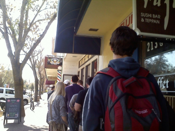 Pliny The Younger worshipped across Davis