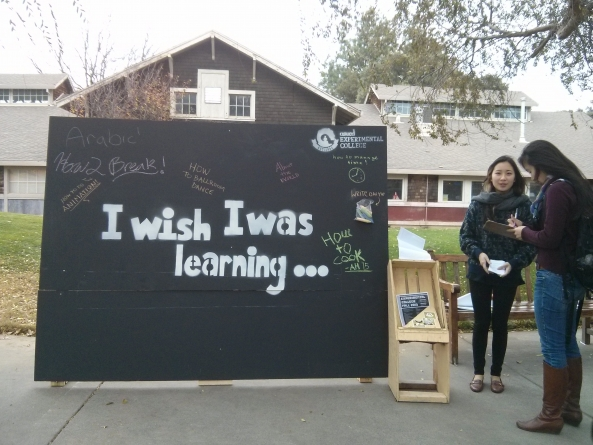 """Experimental College holds """"I Wish I Was Learning"""" campaign"""