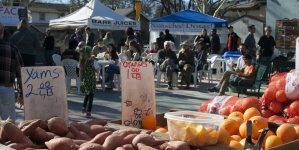 Vendors at Davis Farmers Market share information about food production with customers