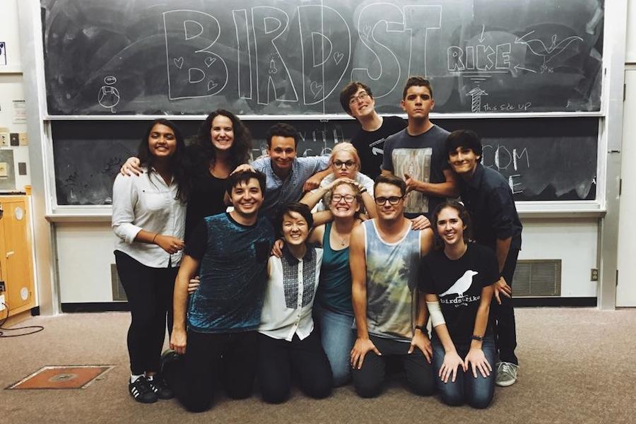 Friday nights with Birdstrike