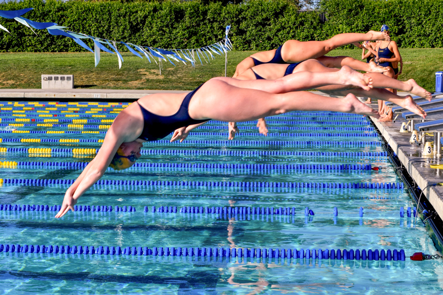 Women's Team of the Quarter: Swimming and Diving