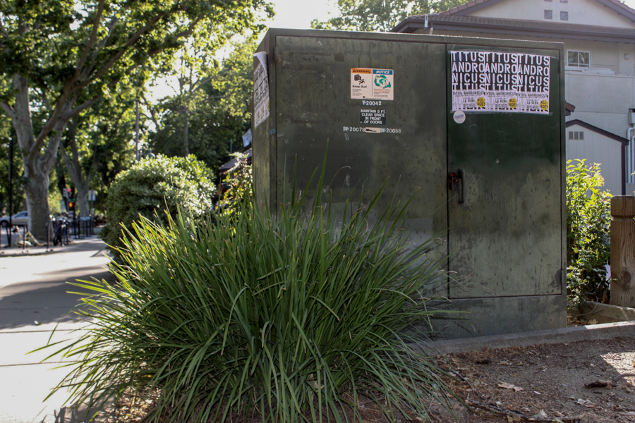 Painted utility box project celebrates Davis Farmers Market