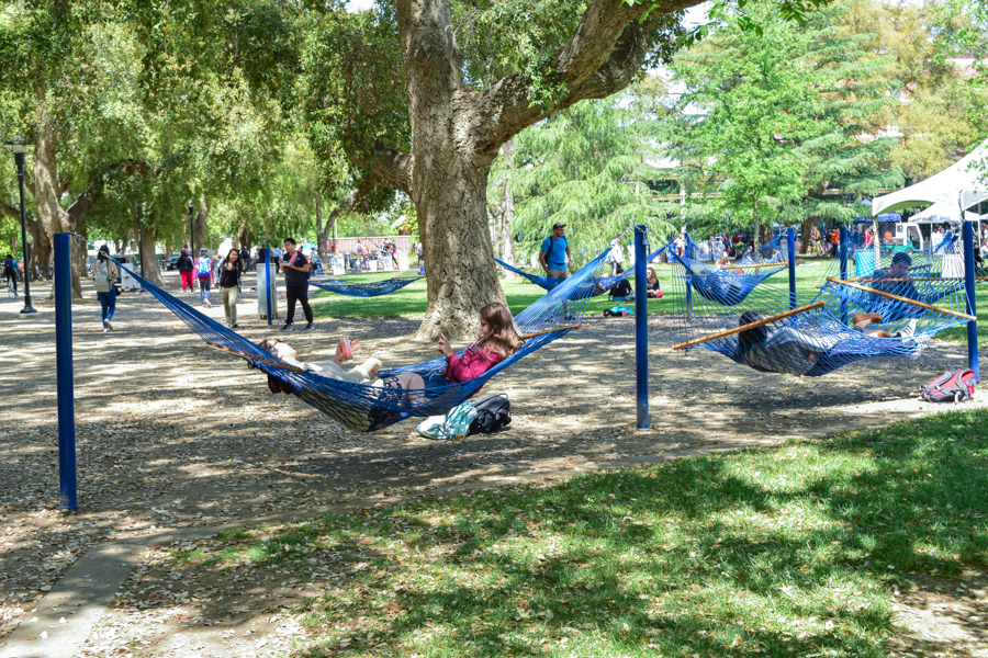 Image result for hammock quad uc davis