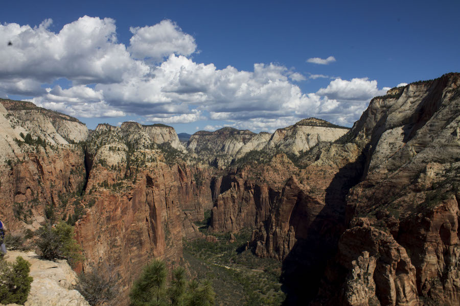 Last summer, my mom and I hiked through southern Utah's national parks. This is a photo from the top of Angel's Landing in Zion National Park. It was a strenuous hike with a huge elevation gain and the final mile was just on a narrow path with huge drop-offs on each side. I'm really proud of my mom for overcoming her fears and making it all the way to the top. (LUCY KNOWLES)