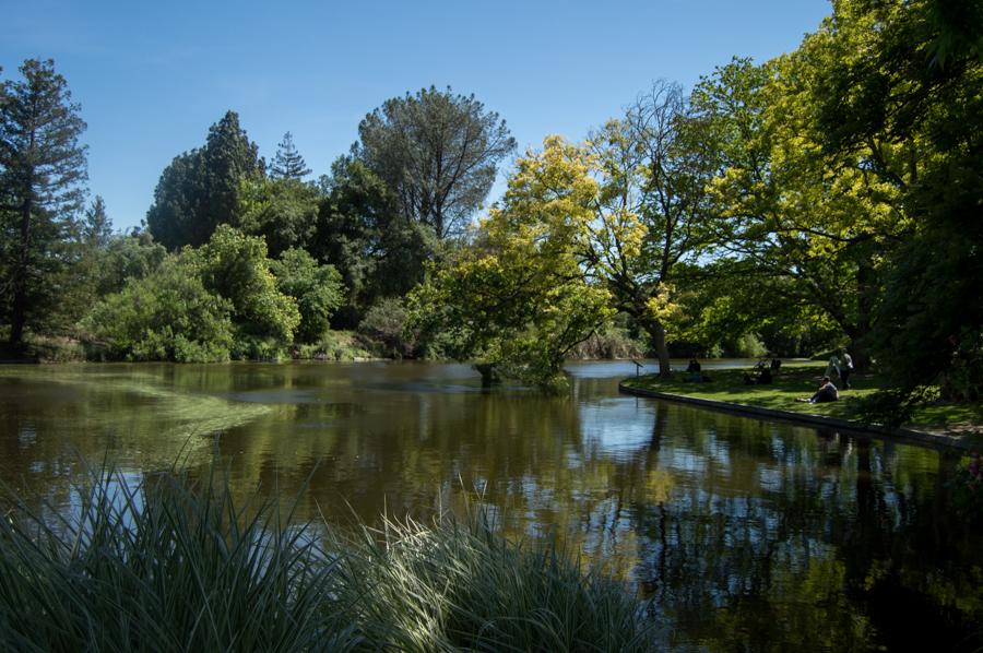 Most Picturesque Location: The Arboretum