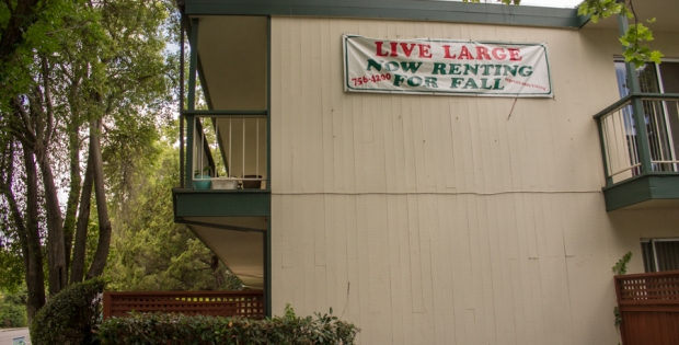 City plans to root out substandard rental properties