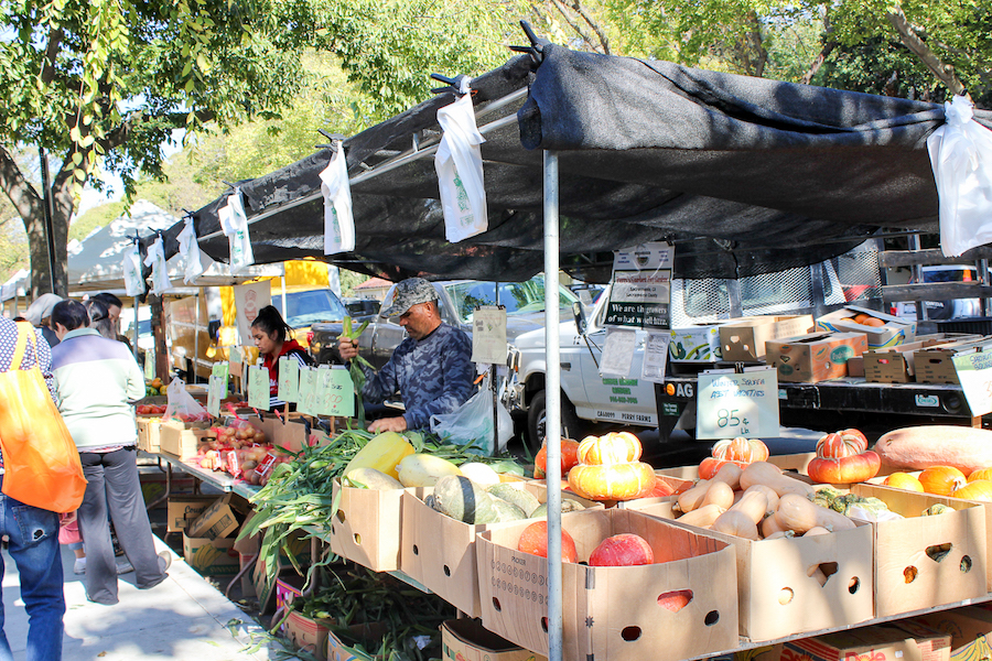 Davis Farmers' Market hits the stands for its 40th year