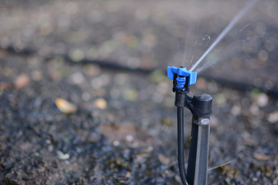 UC Davis takes new measures against drought