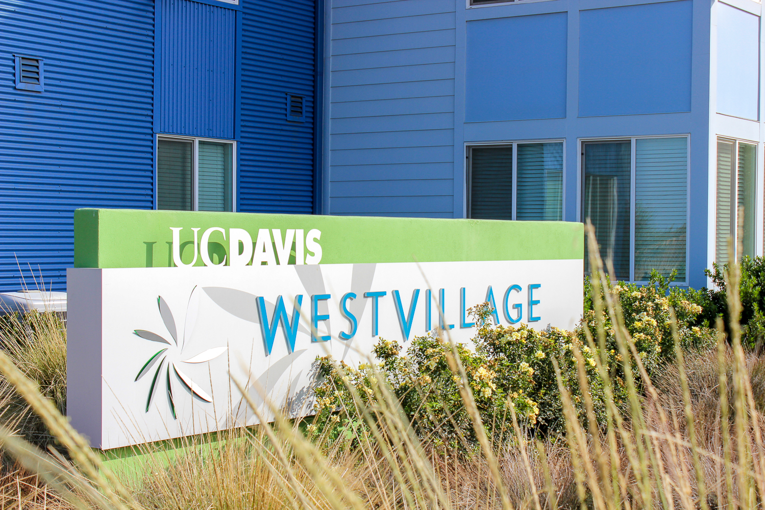 West Village, UC Davis begin project to build 50 homes for faculty, staff