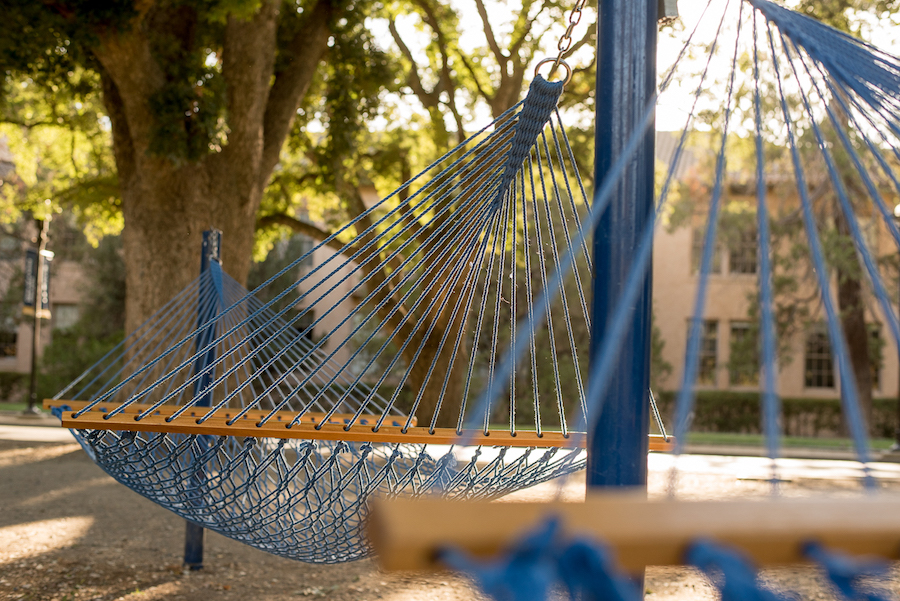HUMOR: First-year actually thinks he's grabbing a hammock this quarter