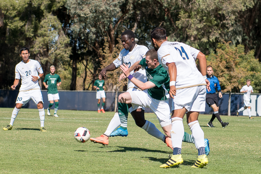 UC Davis men's soccer falls short, excited for conference play