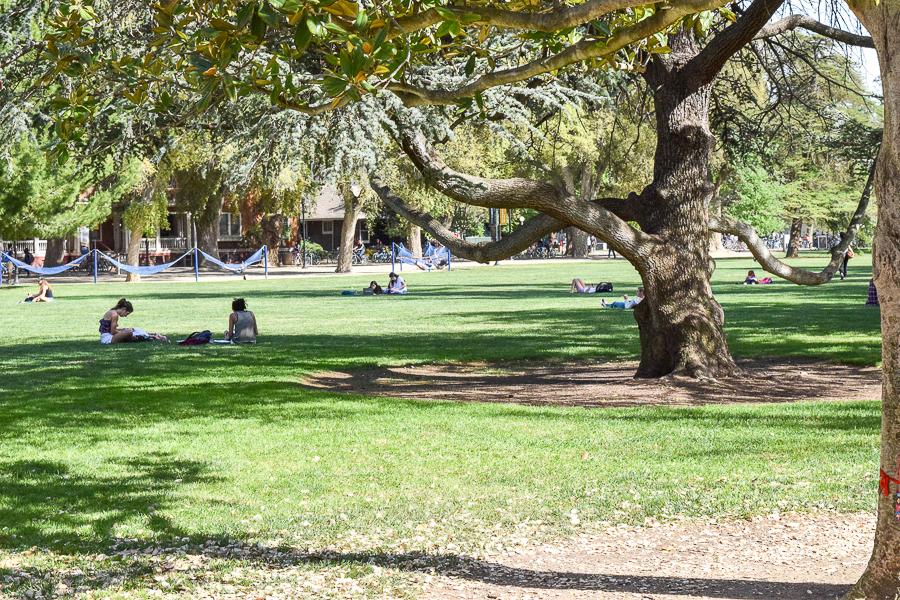 HUMOR: Linda Katehi caught pickpocketing students on Quad