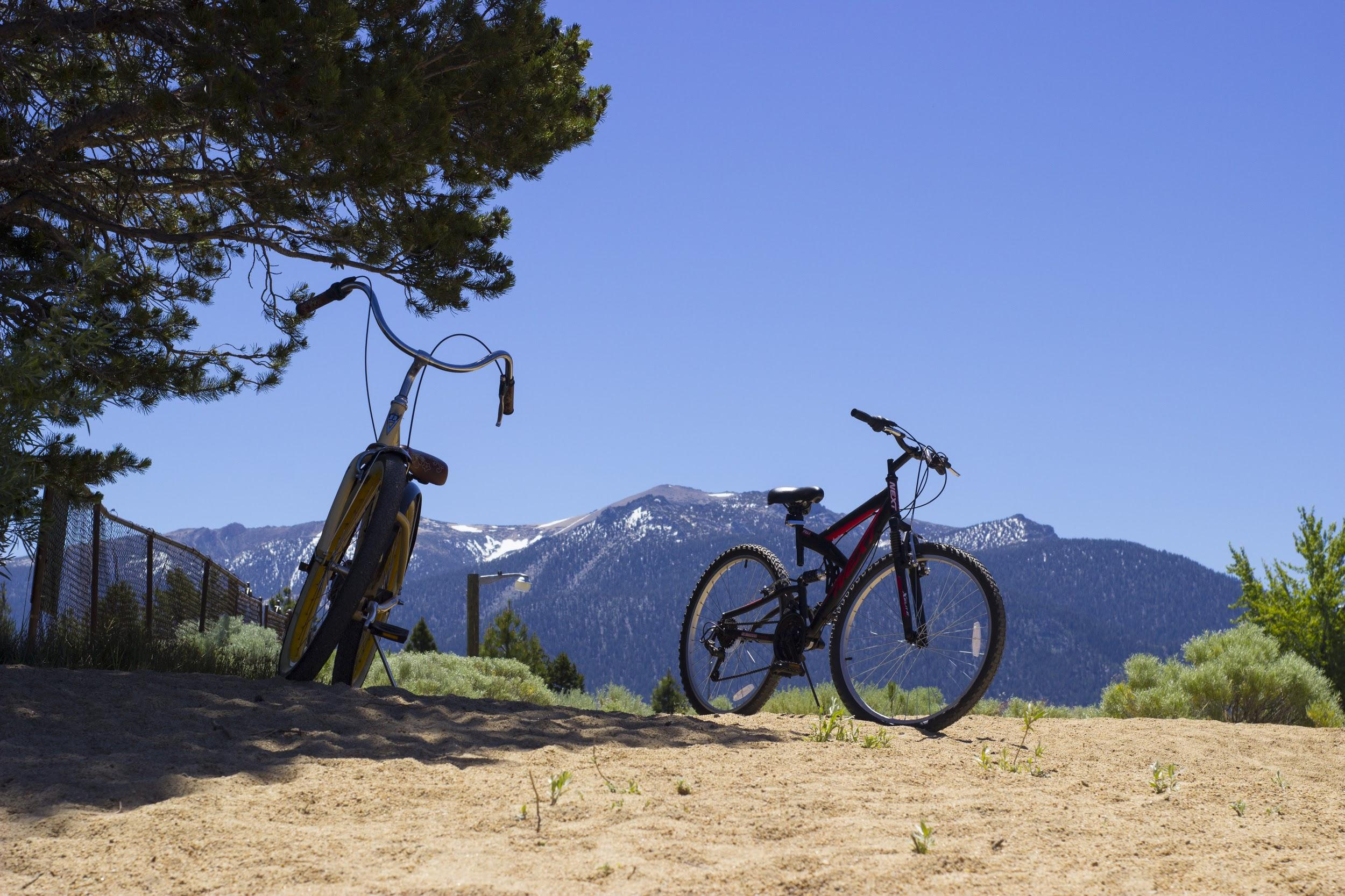 Taken at Lake Tahoe during a family trip! (AMY HOANG)