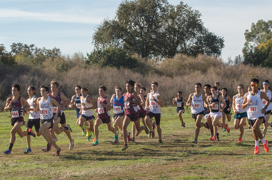 Cross Country runs up excitement for regionals