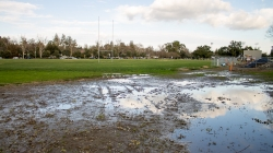 Humor: Draining the swamp — administration promises to clear out Russell Field after rains