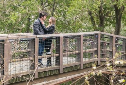 UC Davis tells its love stories