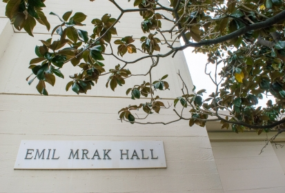 A look at Mrak