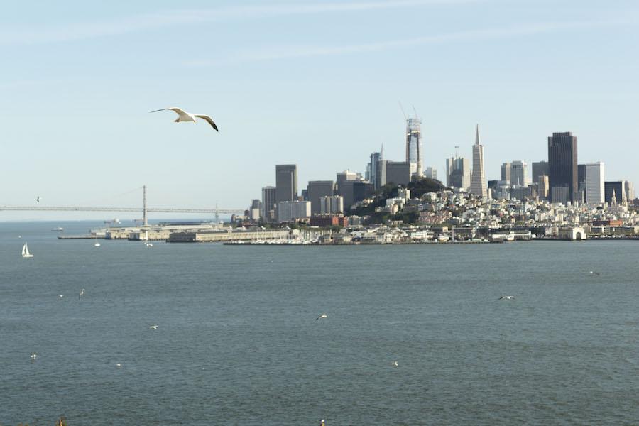 Best day trip: San Francisco