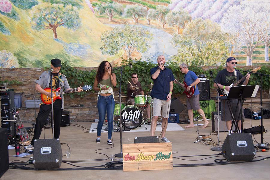 7th Annual Davis Music Festival