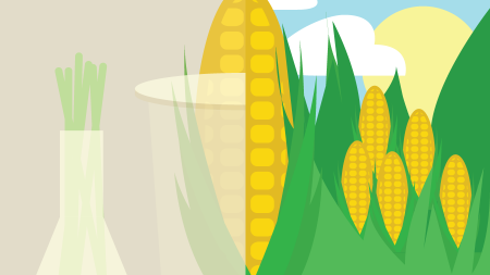 Double Take: Are we in a world where GMOs need to stay?
