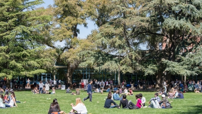 Guest: The two different worlds of transfer students and four-year students