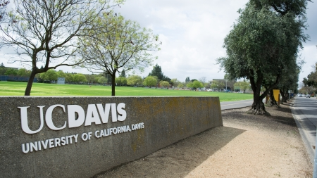 Guest: Learning how to fully maximize and appreciate the Davis experience