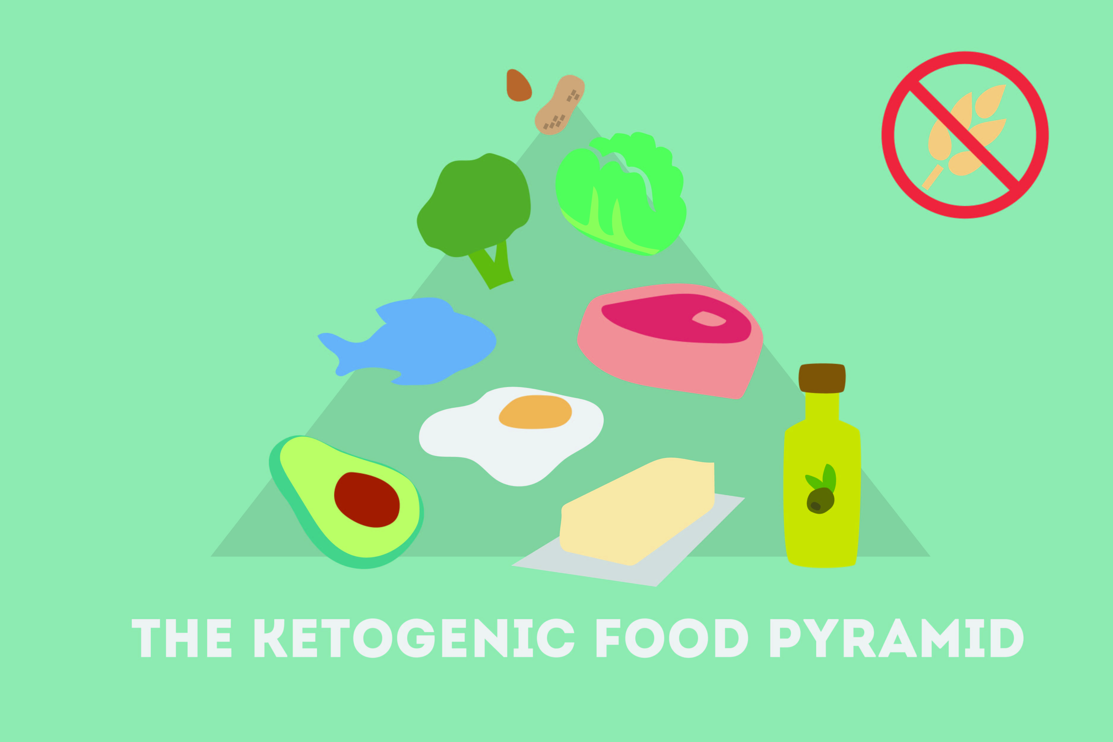 Ketogenic Diet Increases Life Longevity