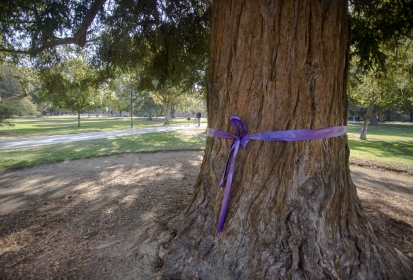 Domestic Violence Awareness: Love Shouldn't Hurt