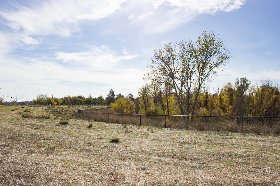 North Davis lot to go through habitat restoration