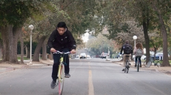 Humor: Davis students put Stranger Things kids to shame in panicked biking contest
