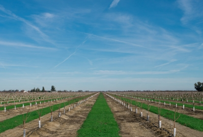 Cal Ag Roots to develop animated atlas of California farming history
