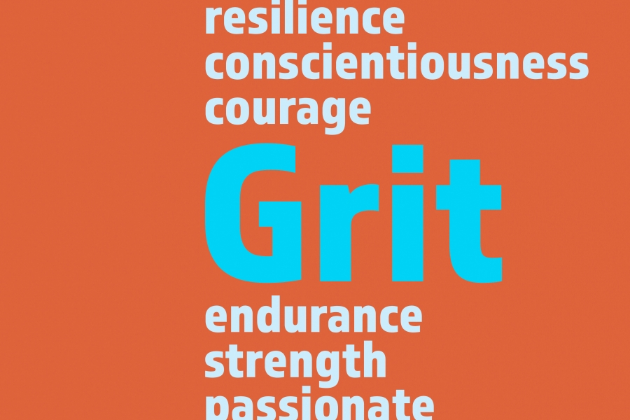 essay on grit and determination