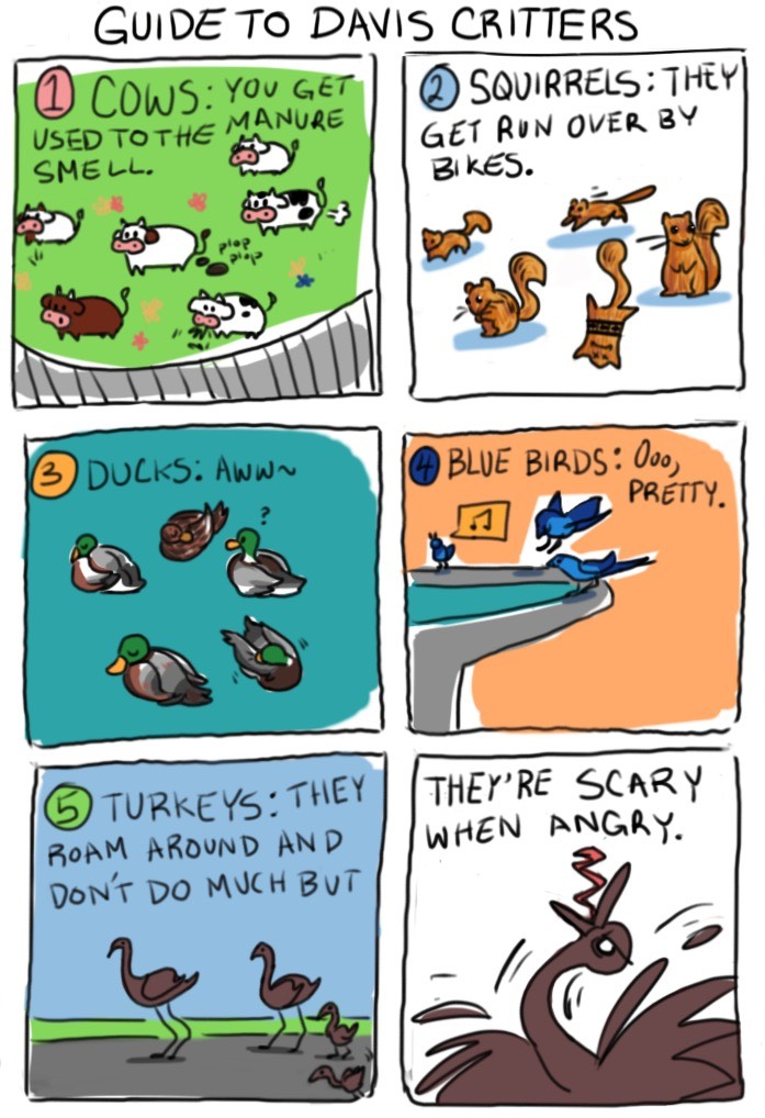 Cartoon: Guide to Davis critters