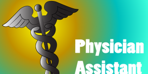 Physician Assistants: The New Movers and Shakers of Healthcare