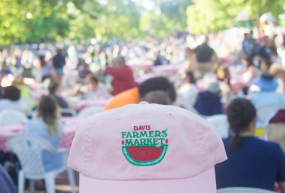 Fun Facts about the Davis Farmers Market