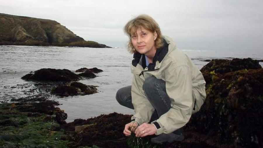 In memoriam: Susan Williams