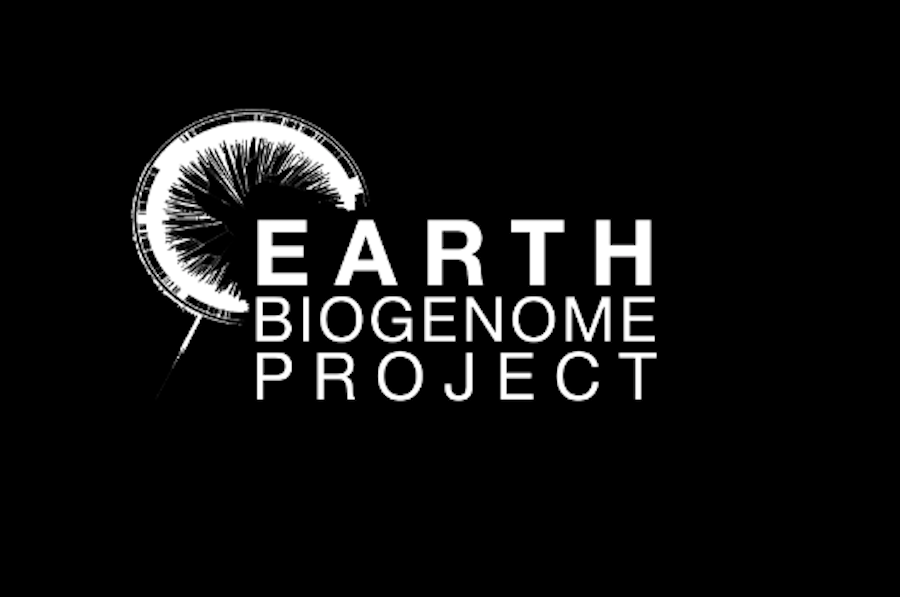 Sequencing life on Earth