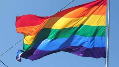 UC Davis community renounces Dixon vice mayor's controversial column calling for Straight Pride American Month