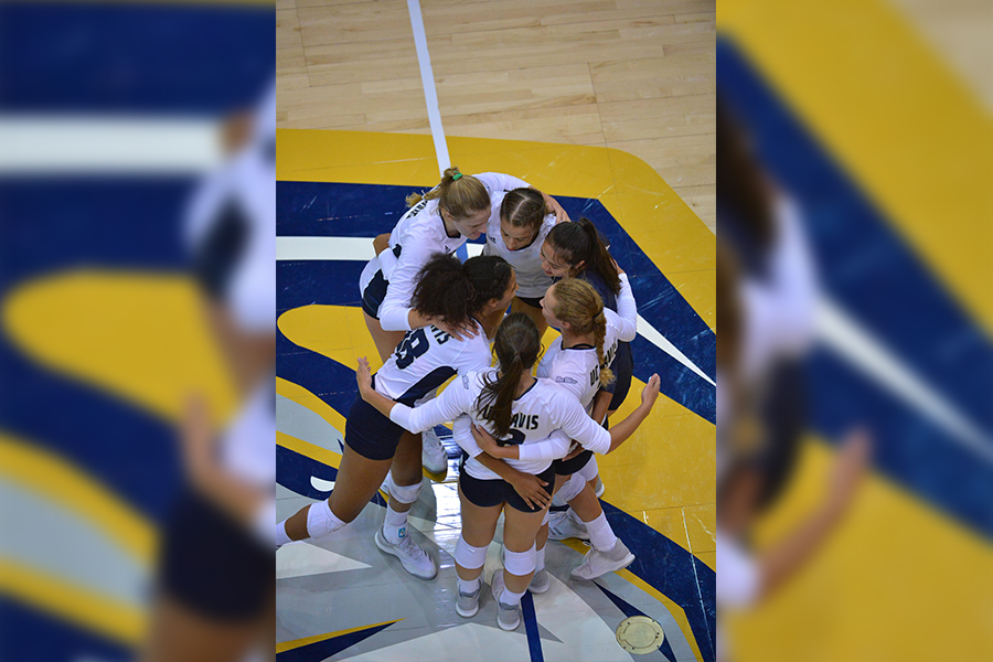 UC Davis volleyball season recap and preview