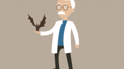 Sierra Leone Bats Host Ebola Virus