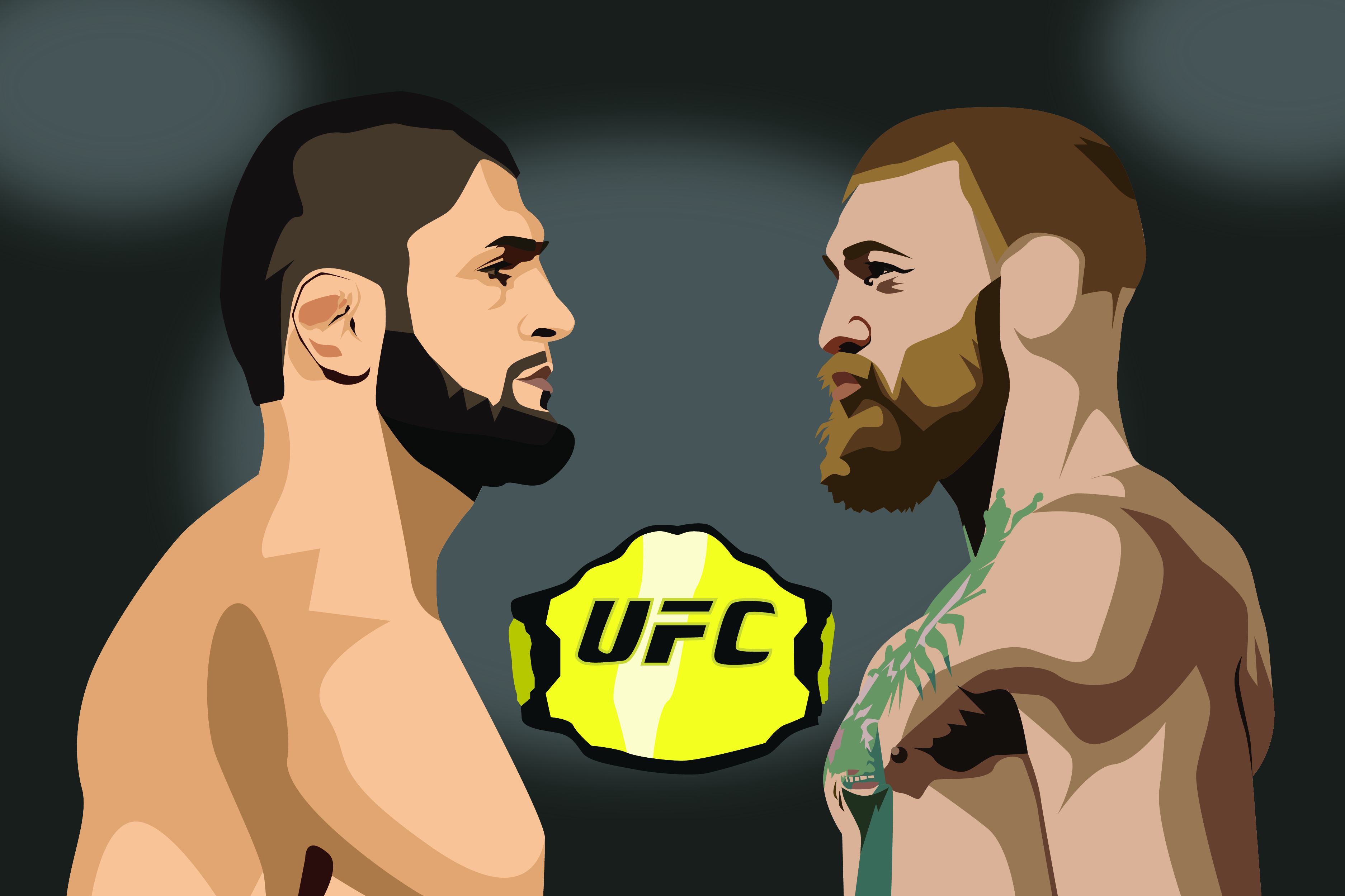Looking back at UFC 229