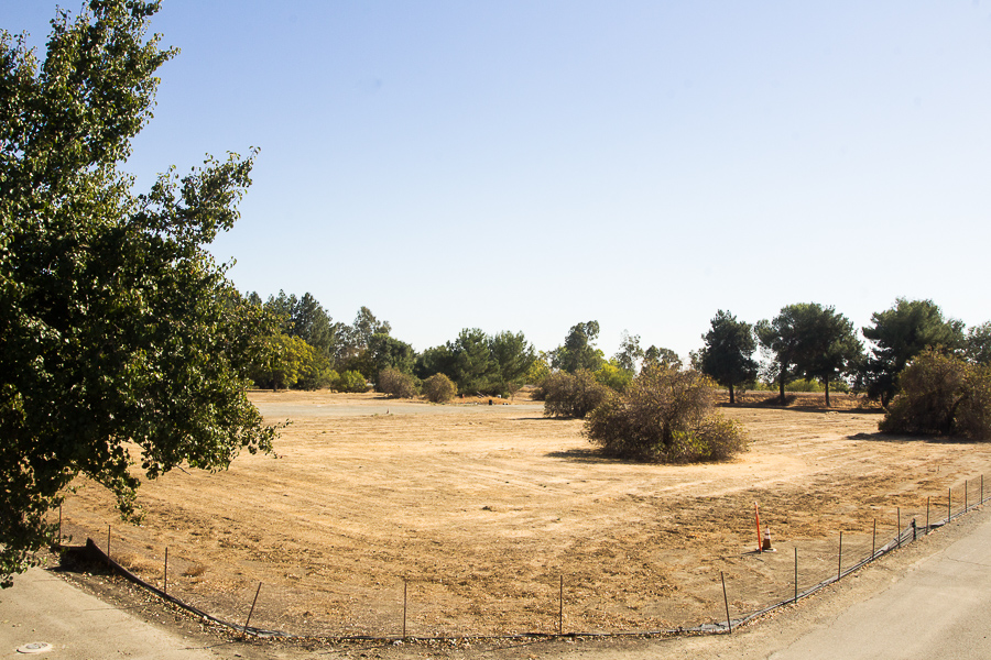 Following radioactivity testing on beagles decades ago, UC Davis to finish cleaning contaminated soil