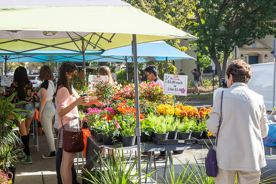 Central Park Gardens hosts annual Open House and Plant Sale