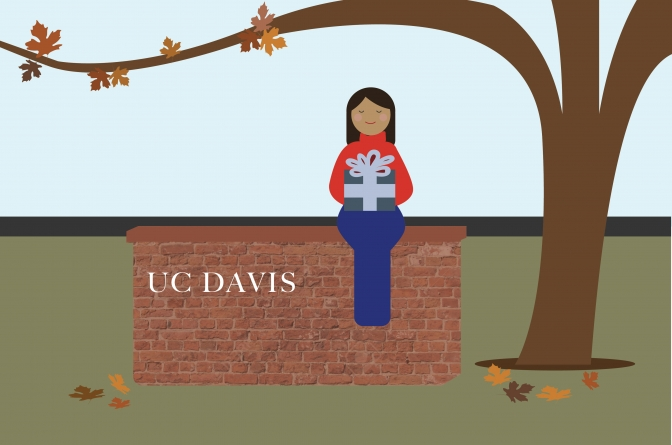 There's no place like Davis for the holidays