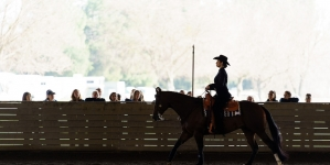 Equestrian wins first ever competition against No. 9 Delaware State