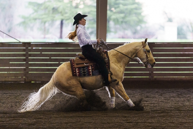 UC Davis equestrian falls to visiting Fresno State