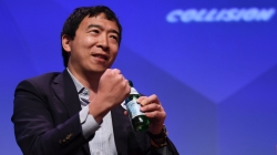 The Andrew Yang phenomenon