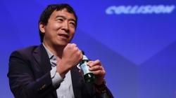 The Andrew Yang phenomenon