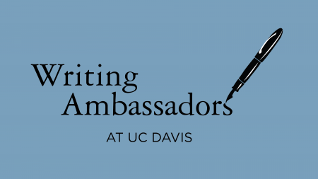 Writing Ambassadors: exploring the intricacies of education