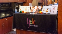 Yolo County Food Bank development initiatives affect Davis